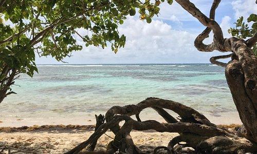Tres belles plages