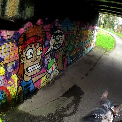Graffiti under the Bridges