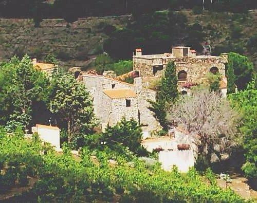 Clos Castell un savoir- faire pour un vin différent....