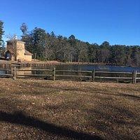 Lake with ducks. Nice walk