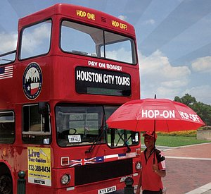 Hop on for sightseeing fun !