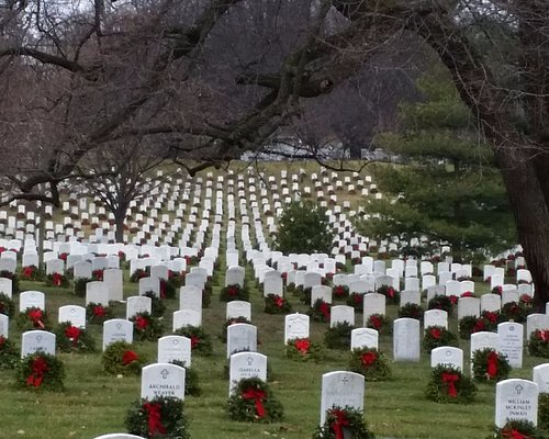 perfect rows of markers with beautiful wreath/red ribbon attached