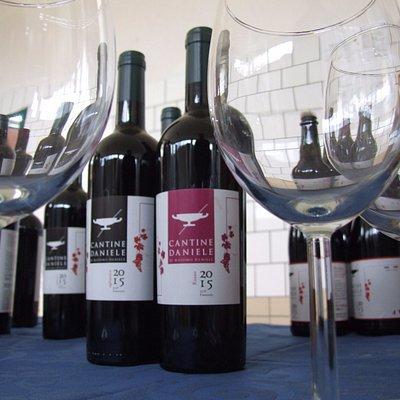 Vino MASSIMO (Aglianico in purezza), vino EFESTO (Barbera) e FERRO ROSSO (Aglianico, Barbera, Sa
