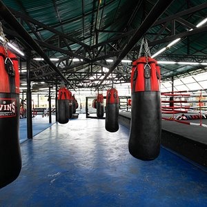A large bag area with both muay thai and boxing bags