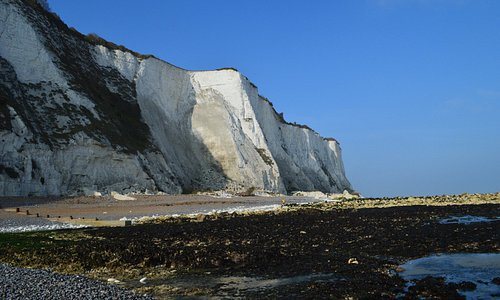beach and white cliffs
