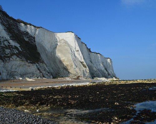 beach and white cliffs