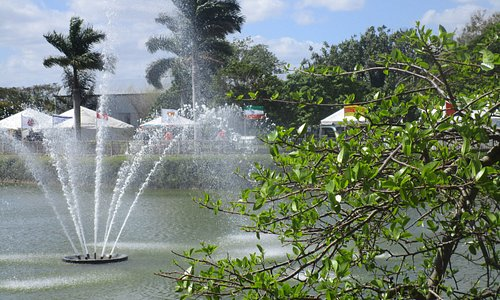The fountain in the pond.
