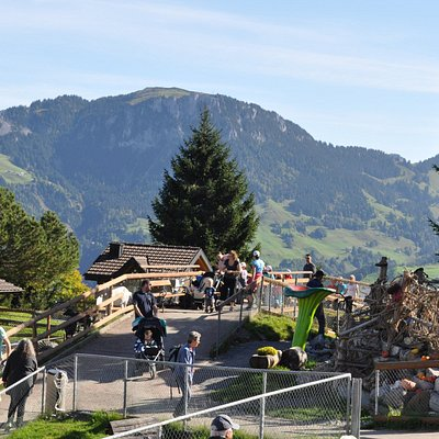 Blick von Bergstation Richung 5-Stern-Hexenspielplatz und Sommerrodelbahn