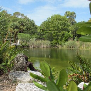 At the Garden's main entrance visitors can look over the Northside Pond.