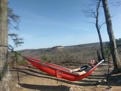 Hanging out on Auxier Ridge