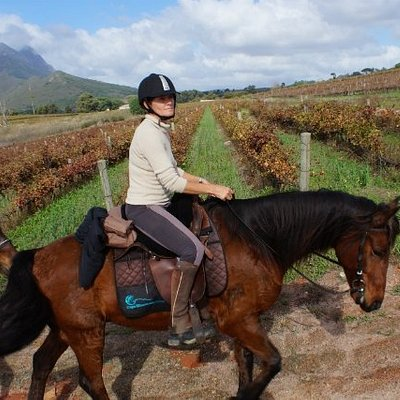 Horse Riding in the Cape Winelands