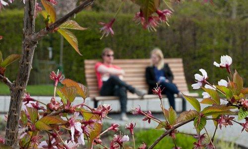 Kunskapsparken vid SLU Uppsala, Sverige 2013. © Jenny Svennås-Gillner, SLU
