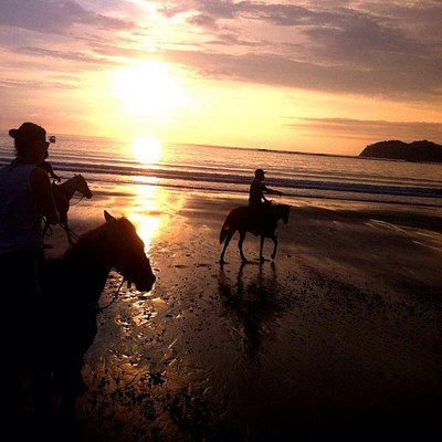 Book a horseriding tour with us to see the most beautiful tropical views.