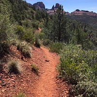 Mount Wilson Trail