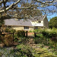 Old farm, Strawberry Hill, Albany, Great Southern - from gardens