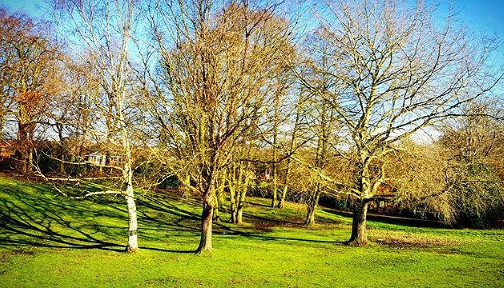 Lots of lovely picnic areas