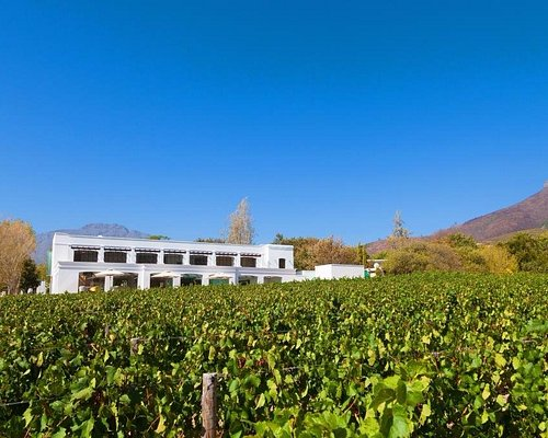 The Lanzerac Spa boasts panoramic views of towering mountains and rows of lush vineyards.