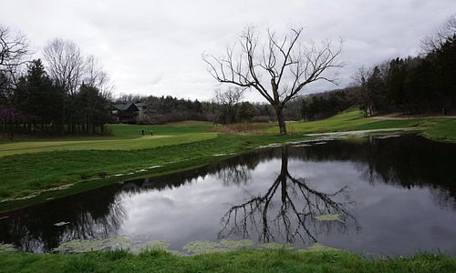 "I call this picture ""Reflection"". Taken at Old Kinderhook golf course."