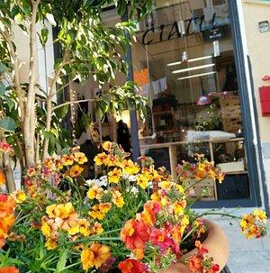 Spring Ciatu alab ; Piazza Aragona 3 , Palermo,