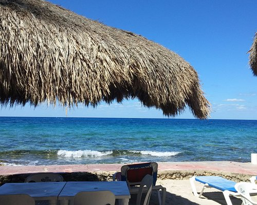 View from our beach umbrella