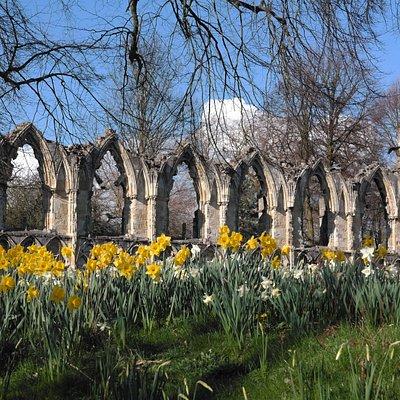 York in bloom!