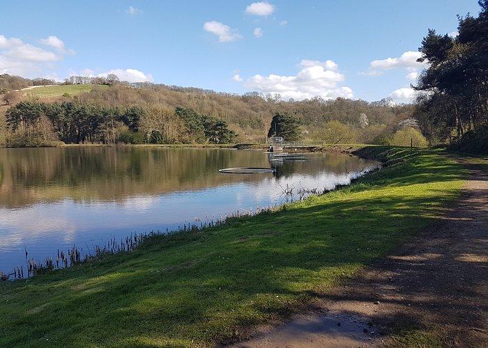 Trimpley Reservoir.