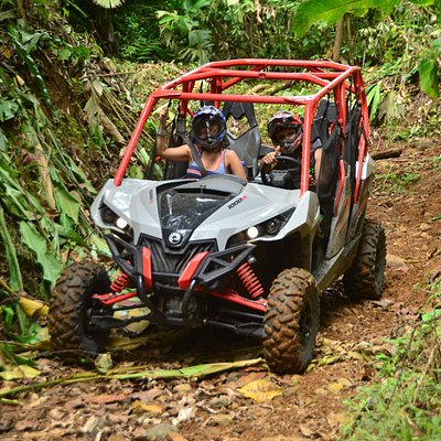 Drive through the Costa Rican rainforest