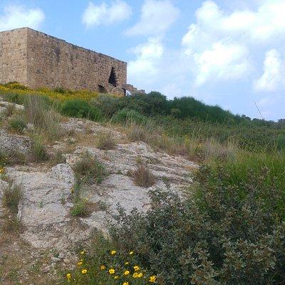 גן לאומי נחל אלכסנדר - חוף בית ינאי