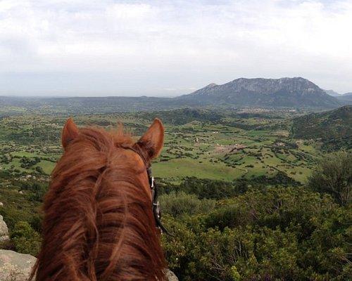 panoramica della passeggiata a cavallo