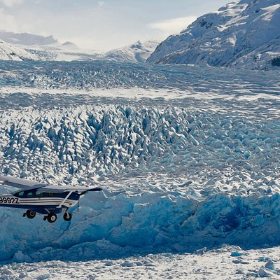 Check out our Glacier Explorer Tour and see this!