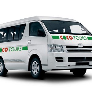 An 8-passenger Cocotours van of the type used in Puerto Plata