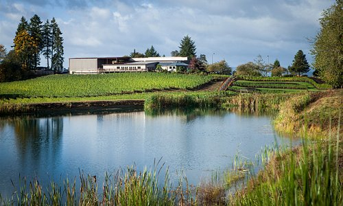View of the Elk Cove Tasting Room from the pond