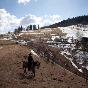 Z grzbietu konia świat staje się piękniejszy