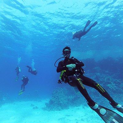Diving fun!