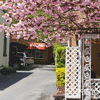 Spring is here! Kensington is the place to be if you're looking to get away from the city!