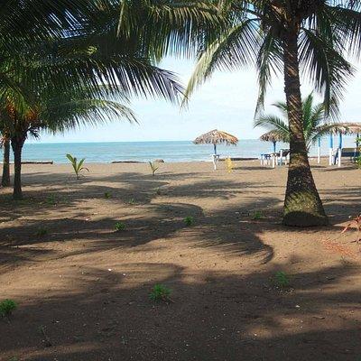 Playa de Piangüita