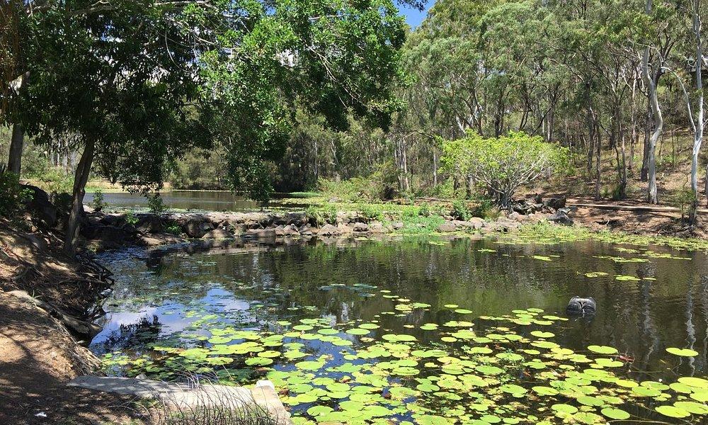Walk across the pond
