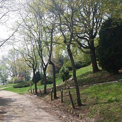 Vista do parque