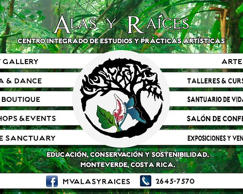 Alas y Raices is an Integrated Art Center located in Downtown Santa Elena