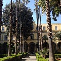 Sant'Andrea delle Dame : chiostro con palme