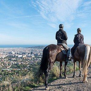 Barcelona Views Horse Tour