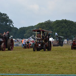 Traction Engines on parade in the Main