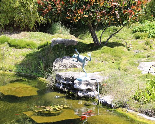 Landscaping with fish ponds and fountains
