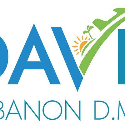 Logo DAVE LEBANON