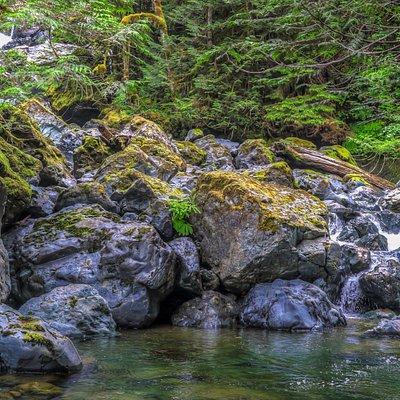 The falls along the Rosewall Creek trail