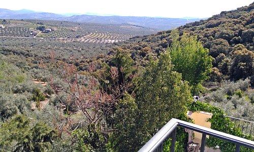 """Vista desde el balcón de la habitación """"Málaga"""""""