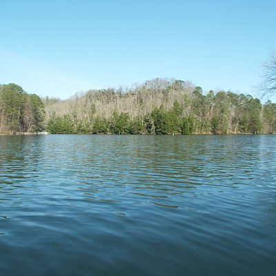 Woodscreel lake,so quiet and relaxing
