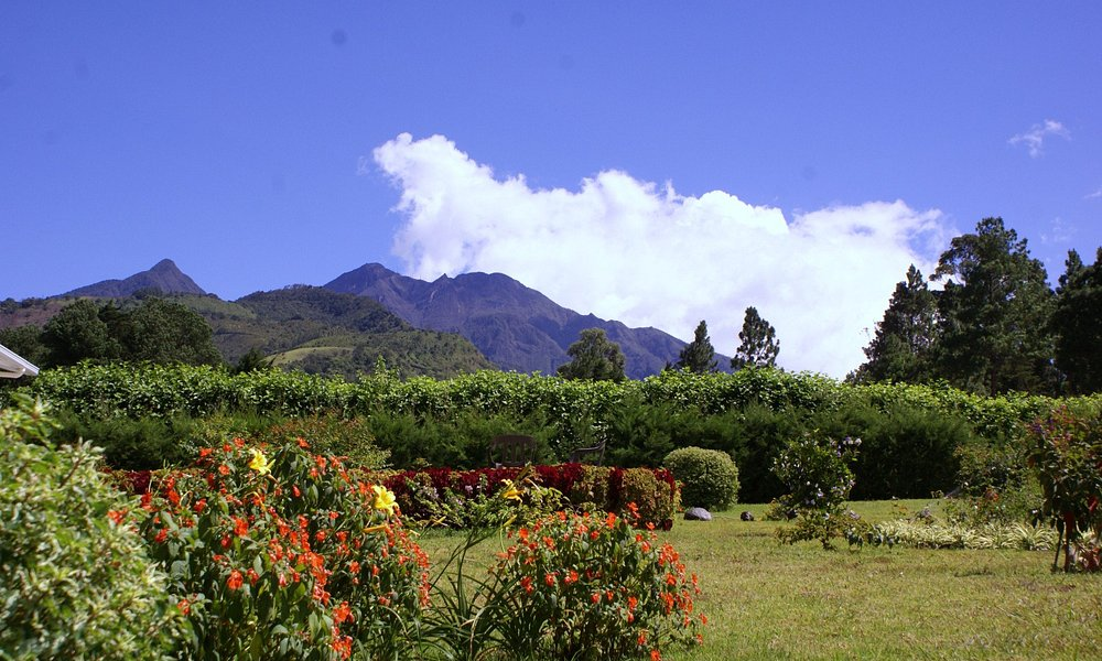 "Volcan Baru seen from ""Las Plumas Holiday Home Rentals"" Paso Ancho, Volcan, Panama"