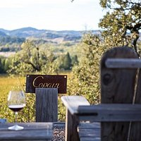 Copain Adirondack View from our Hilltop Tasting Room
