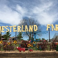 ome to YesterLand Farm for a nostalgic step back in time. It's old-fashioned fun on the farm.